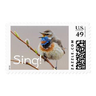Bluethroat Singing Postage