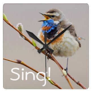 Bluethroat Singing Square Wall Clock