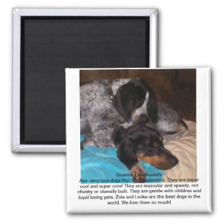 Bluetick Coonhounds 2 Inch Square Magnet