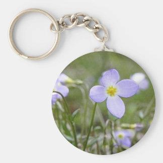 Bluets - Quaker Ladies Basic Round Button Keychain