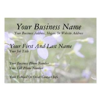 Bluets - Quaker Ladies Large Business Card
