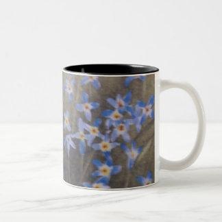 Bluets Two-Tone Coffee Mug