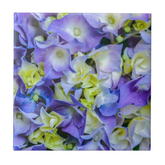 BlueYellow Flowers.jpg Tile