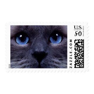 blueyes postage