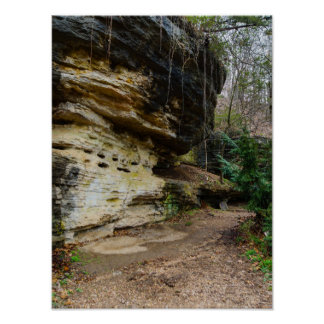Bluff Lined Walkway Poster