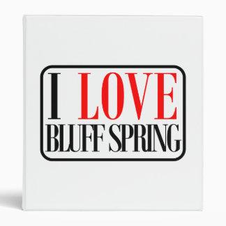 Bluff Spring, Alabama City Design Binder