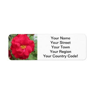Blume de memoria color de rosa etiqueta de remite
