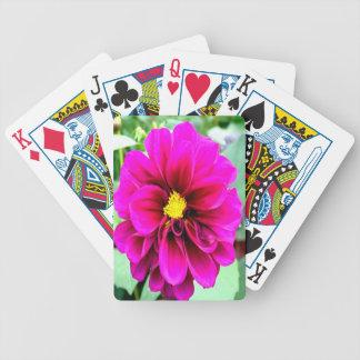 blume del rosarote abierto para el amor barajas de cartas
