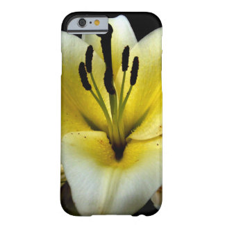 Blumen, Garten, iPhone 6, Barely There Funda De iPhone 6 Barely There