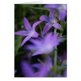 Blur - Bell Flowers -  Floral Photography Card