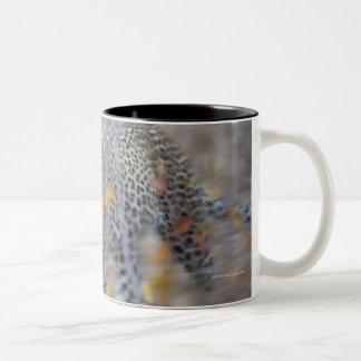 blurred motion Two-Tone coffee mug