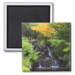 Blurred Rock Waterfall, Maple Green & Orange Trees 2 Inch Square Magnet