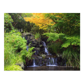 Blurred Rock Waterfall, Maple Green & Orange Trees Postcard