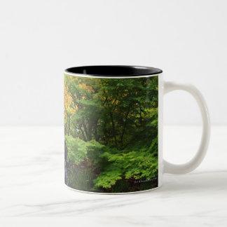 Blurred Rock Waterfall, Maple Green & Orange Trees Two-Tone Coffee Mug