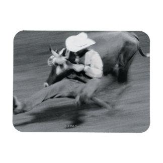 Blurred shot of cowboy wrestling steer rectangular magnets