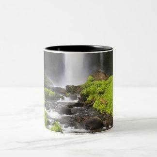 Blurred Waterfall and River Two-Tone Coffee Mug