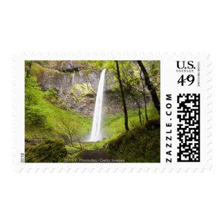 Blurred Waterfall around lush Greenery in Oregon Postage