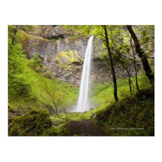 Blurred Waterfall around lush Greenery in Oregon Postcard