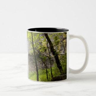 Blurred Waterfall around lush Greenery in Oregon Two-Tone Coffee Mug