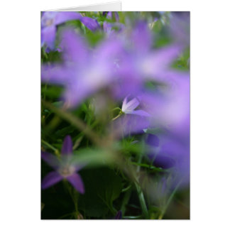 Blurry Purple Floral Photography Sympathy Card