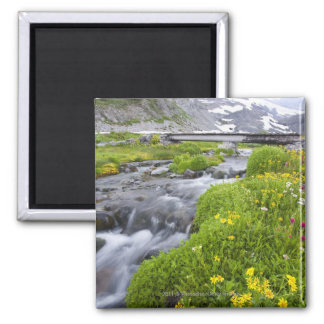 Blurry River with Yellow White Pink Wildflowers 2 Inch Square Magnet