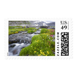 Blurry River with Yellow White Pink Wildflowers Stamp