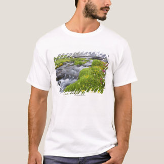 Blurry River with Yellow White Pink Wildflowers T-Shirt