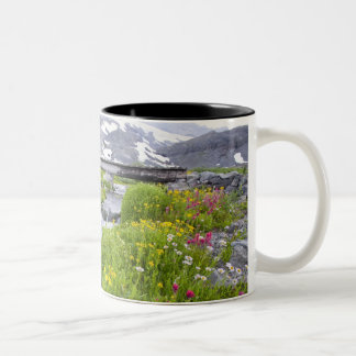 Blurry River with Yellow White Pink Wildflowers Two-Tone Coffee Mug