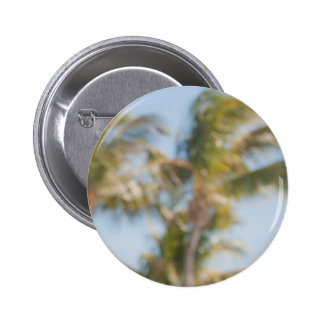 Blurry tree with blue sky pinback button