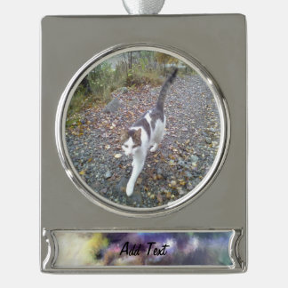 blurry troll photo silver plated banner ornament