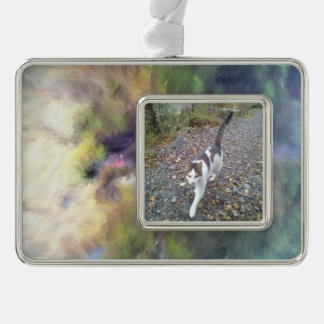 blurry troll photo silver plated framed ornament