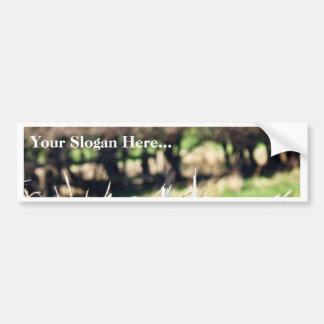 Blury Hedge Car Bumper Sticker