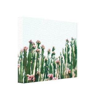 Blush Cactus Canvas Print