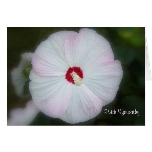 Blush Hibiscus Card