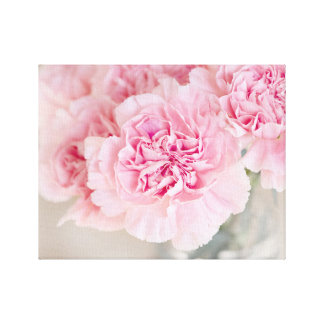 Blush Pink Carnations Canvas Print