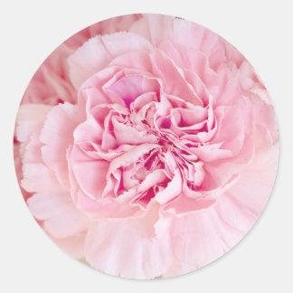 Blush Pink Carnations Classic Round Sticker