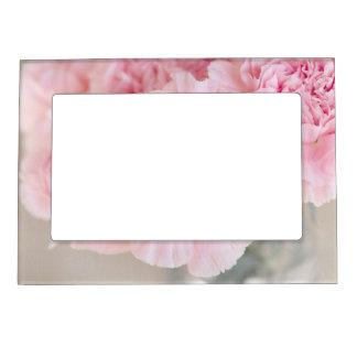 Blush Pink Carnations Magnetic Photo Frame