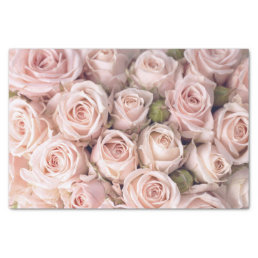Blush Pink Roses Tissue Paper