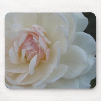 Blush rose mouse pad