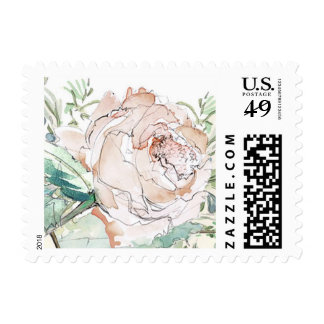 Blush Rose Postage Stamp