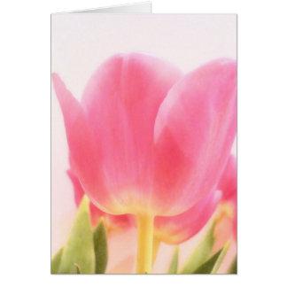 Blush Tulip Card