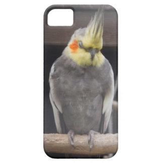 Blushing Cockatiel Case