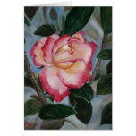 Blushing Delight Rose Blank Card