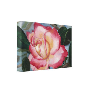 Blushing Delight Rose Wrapped Canvas Print