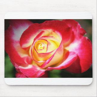 Blushing Rose No. 2 Mouse Pad