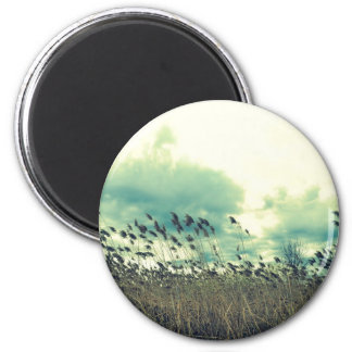 Blustering Field 2 Inch Round Magnet