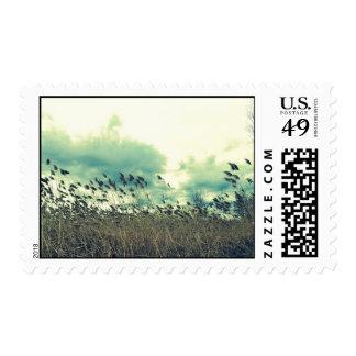 Blustering Field Postage Stamp