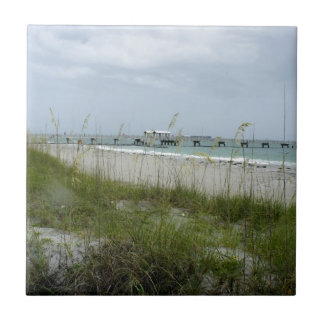Blustery Day at the Beach Ceramic Tile