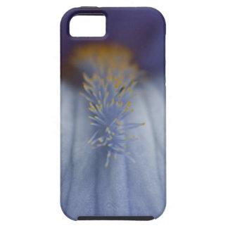 BLYE Blue and Yellow Iris iPhone SE/5/5s Case