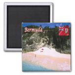BM - Bermudas - playa Imán Cuadrado